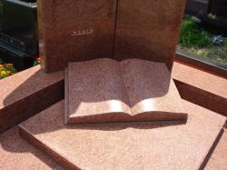 Книга Лезник